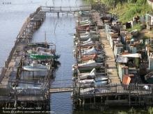 Садоводы-рыбаки создали лодочный кооператив