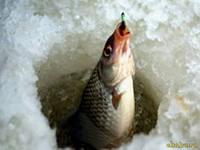 В оттепель челнинские рыбаки вышли в залив
