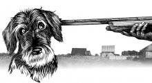 Садоводы расстреливают бродячих собак
