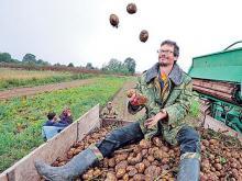 У фермеров не получается объединяться в кооперативы. Как им тогда найти дорогу в торговые сети?