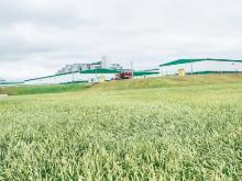 В 2016 году выручка холдинга «Агросила» составила 31 миллиард рублей