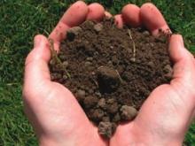 Демонтируя трубопровод, компания из Татарстана смешала землю с глиной. Она заплатит за это 40000