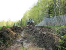 Садоводы должны отделиться от леса защитной полосой. Иначе их ждут штрафы до 0.5 млн
