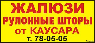 Kaus1134